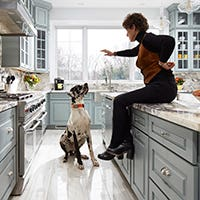 Blue gray kitchen with great dane and homeowner
